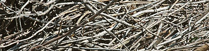 Pile of Multiple Sticks
